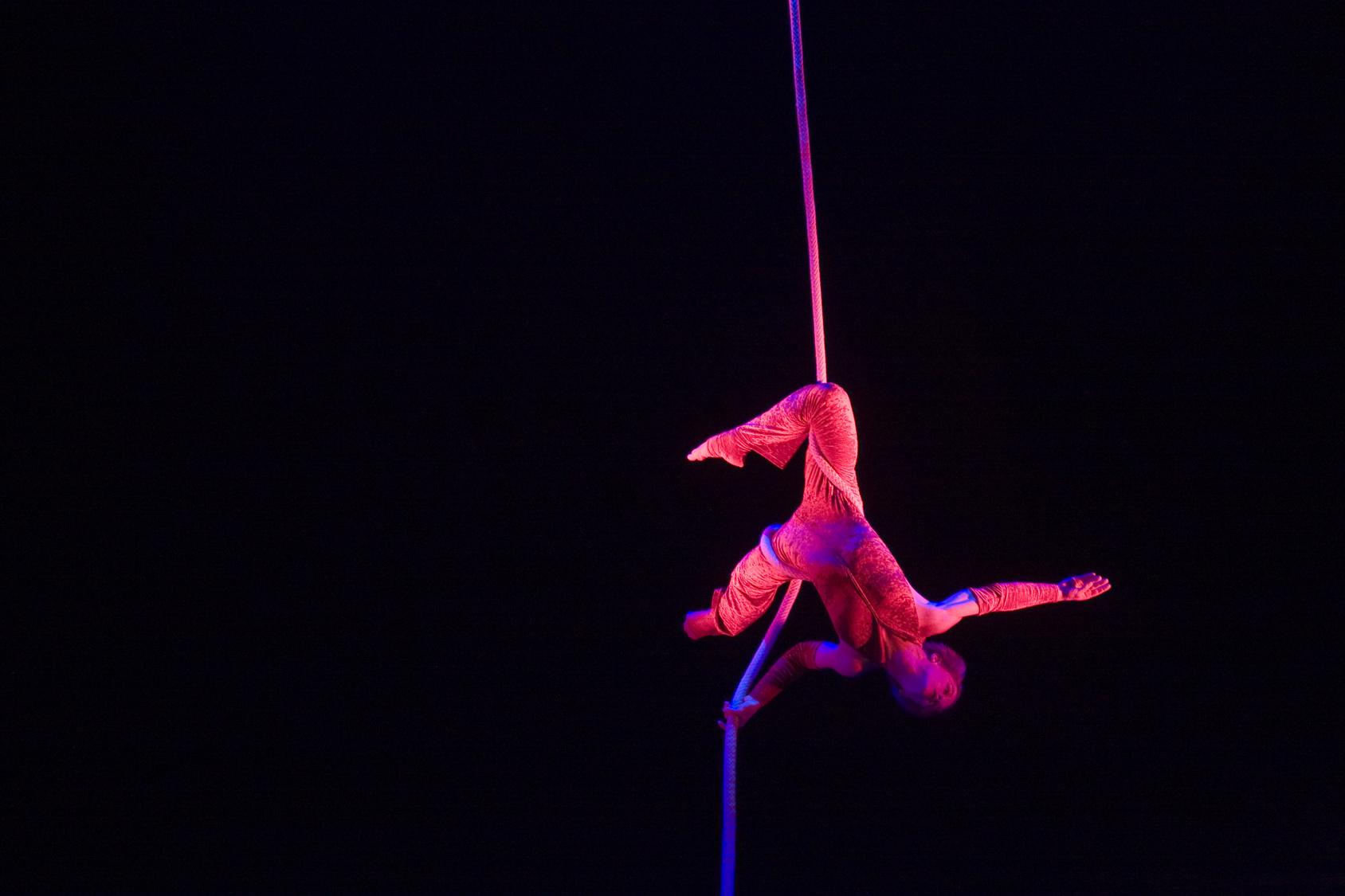 Artistin nach Sturz bei Zirkusshow außer Lebensgefahr